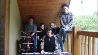 Animals Like Us - Acoustic