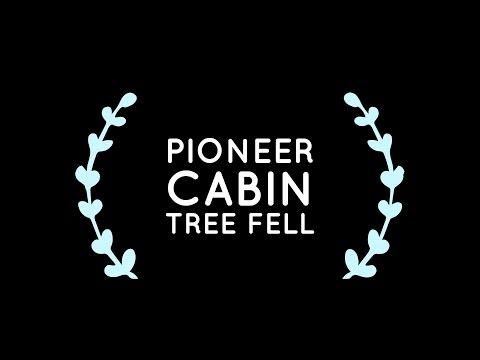 Pioneer Cabin Tree finally falls and we heard it!