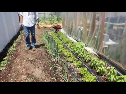 Organic Farming Huntington New York