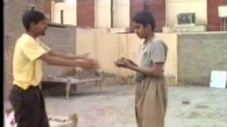 Begum Ki Billi