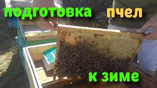 Работаем на пасеке! Подготовка пчел к зиме!