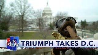 triumph-the-insult-comic-dog-goes-to-washington-to-cover-trump-s-impeachment-trial