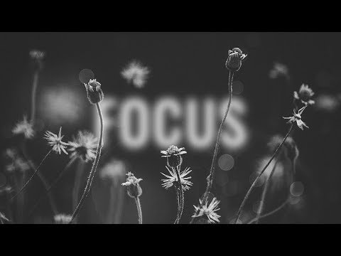 Deorro - Focus feat. Lena Leon (Lyric Video) Ultra Music