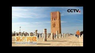《远方的家》 20190515 一带一路(489)摩洛哥 北非花园——摩洛哥| CCTV中文国际
