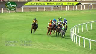 Vidéo de la course PMU ALLOWANCE 3 YO
