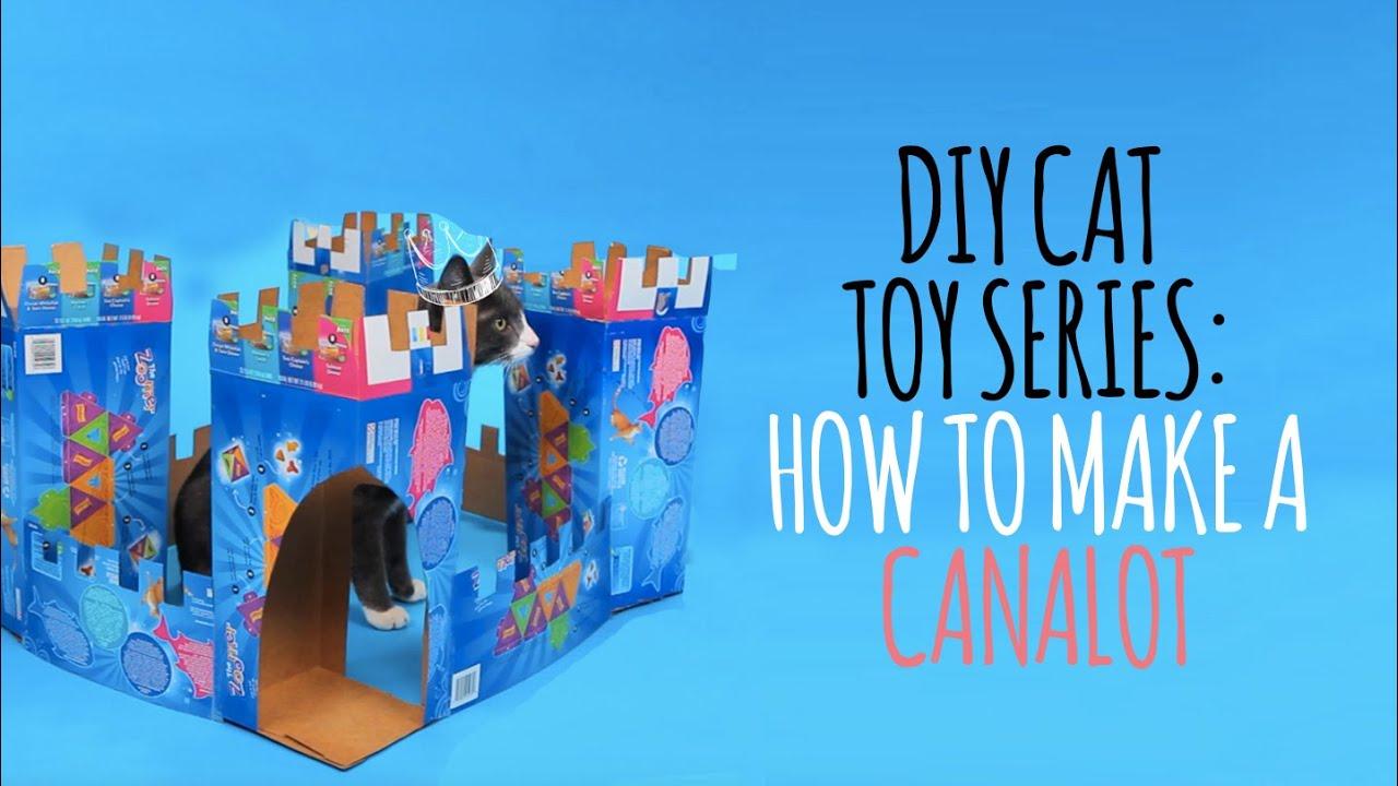 Cat Puzzle Box Video