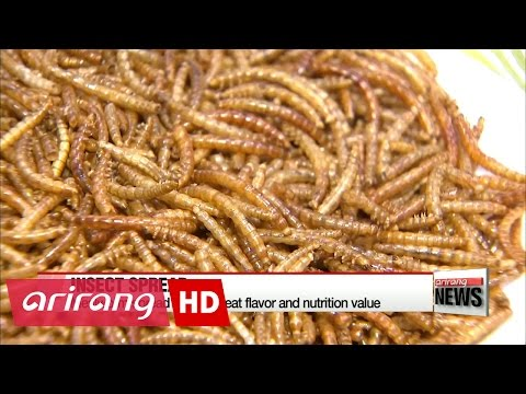 Korean agriculture research center makes spread out of edible mealworms