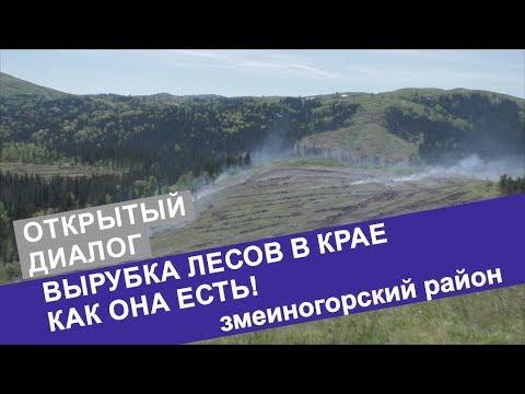 ОТКРЫТЫЙ ДИАЛОГ. Бунт местных жителей! Вся правда о вырубке лесов в Змеиногорском районе