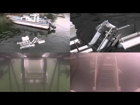 Conveyor-Type Jellyfish Removal Robot System For Venomous Jellyfish