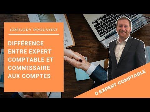[DIFFERENCES ENTRE EXPERT-COMPTABLE ET COMMISSAIRE AUX COMPTES] - Conseils aux entrepreneurs