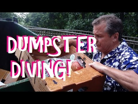 DUMPSTER DIVING At ALDI ~ FREE FOOD And MORE!