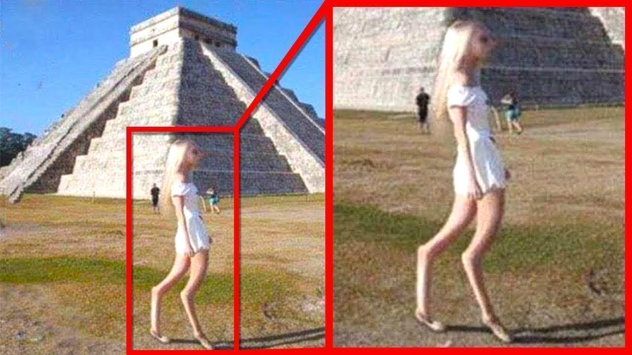 Download Mysterious Creatures Caught On Google Earth