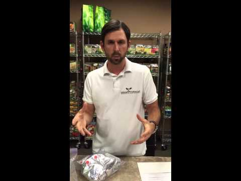 Ideal Protocol Consult Video - How To Follow The Ideal Protein Diet (6-22-15)