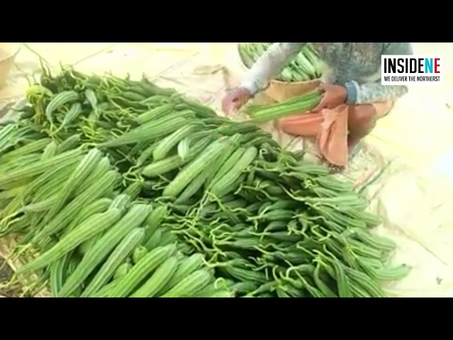 WATCH: Vegetables Wasted in Assam amid 21-Day Nationwide Lockdown