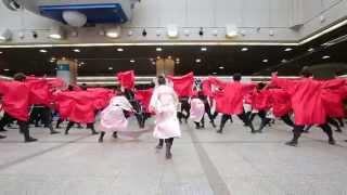 輪舞曲 証 神戸よさこいまつり2014・デュオこうべ
