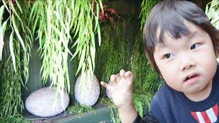 ★「恐竜冒険島~古代恐竜を探せ!」前編 in ポルトヨーロッパ★Huge maze「Dinosaur Adventure Island」1★ thumbnail