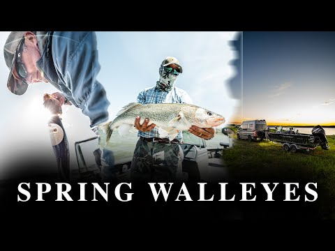 Fishing Big Spring Walleye's On FORT PECK RESERVOIR 2020 | Fishcamp Creative