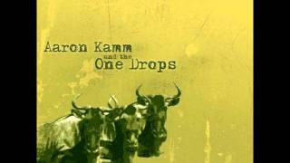 Aaron Kamm and the One Drops - gnu gnu