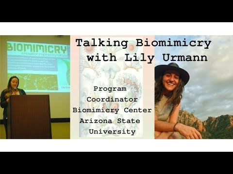Talking Biomimicry With Lily Urmann Of Arizona State University's Biomimicry Center (2019)