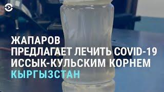 В Кыргызстане COVID 19 предлагают лечить иссык кульским корнем АЗИЯ 16 04 21