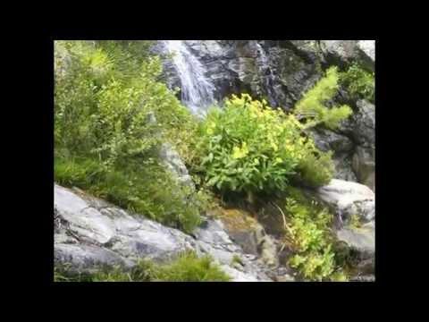 Fais la Connaissance de Vaiana et de Maui | Vaiana | Disney BEde YouTube · Durée:  1 minutes 3 secondes
