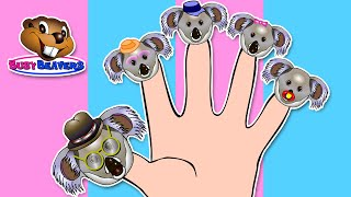 Finger Family Koala Puppets | Learning Easy English For Kids, Catchy Pop Song, Cute Animals, Baby
