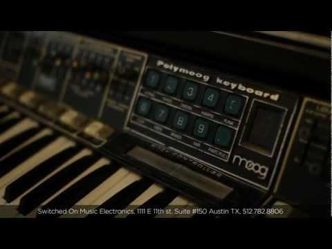Moog Dealer Spotlight: Switched On  Electronics