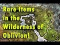 Oblivion - All Rare Unique Wilderness found enchanted items