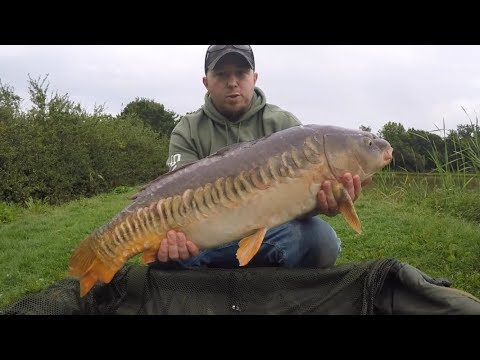 Chequertree Fishery - Short Afternoon Session Surface Fishing