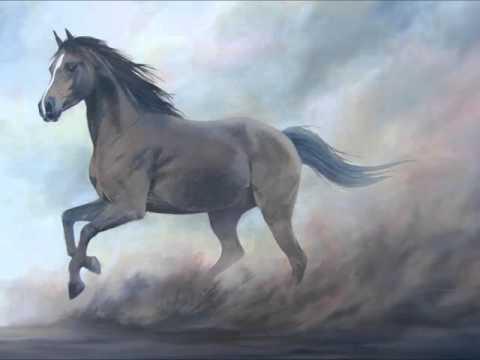 EOARC Ag Minutes: Stephanie Falck-Genetics of Horse Color