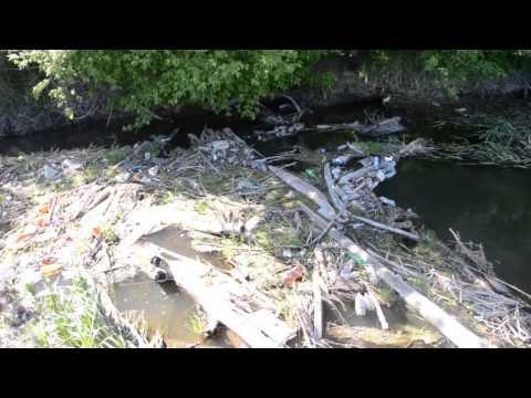 Свалка мусора в реке Сухая Россошь