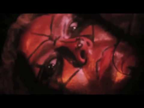 "DAVE DUB ""SKYWALKING"" - DIRECTOR: DJ MASTER SOFTSKULL"