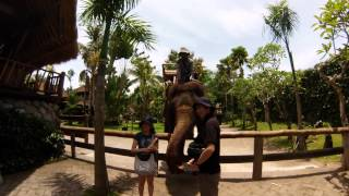 GoPro: Close Animal Encounters, Bali Zoo