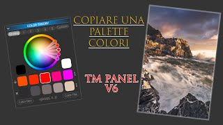Color Theory - TM Panel V6