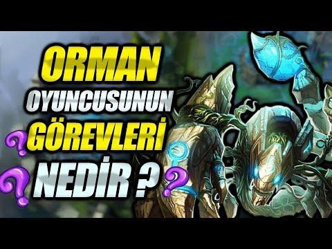 REHBER SERİSİ - ORMANCININ YAPMASI GEREKEN TEMEL ŞEYLER