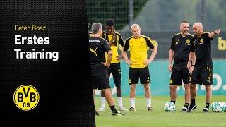 Erstes BVB-Training unter Peter Bosz