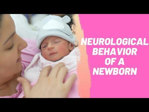 Neurological Behavior of a Newborn