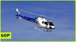 BEAUTIFUL XL RC SCALE ECUREUIL AS350 ELECTRICALHELICOPTER FLIGHT DEMONSTRATION
