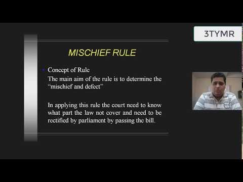 discuss advantages and disadvantages purposive approach