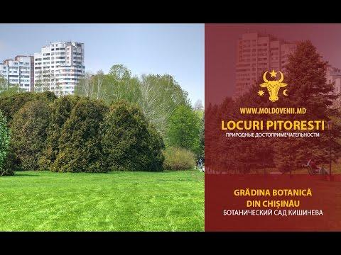 Grădina Botanică a Academiei de Ştiinţe din Moldova, Chişinău