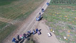 Treworgy Orchard And Corn Maze 2017