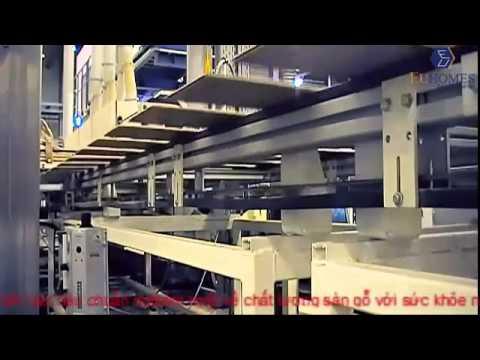 Quy trình khai thác và sản xuất sàn gỗ công nghiệp Đức chất lượng cao