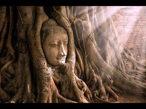 Wat Mahathat | Historical Ayutthaya | Amazing Thailand Part 4 | Bangkok
