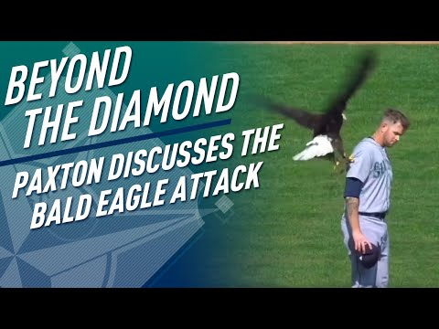 Paxton Discusses The Bald Eagle Attack