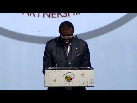 Opening Statement by H. E. Dr. Hage G. Geingob, President of the Republic of Namibia