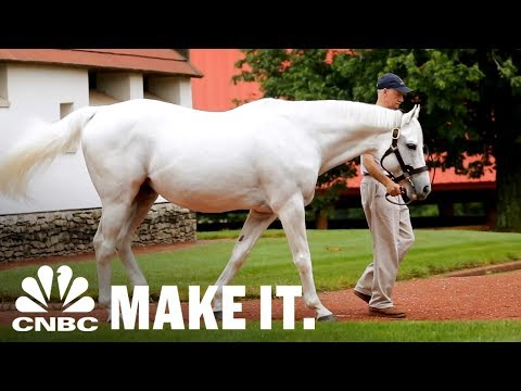 America's Most Valuable Stallion Making Over $35 Million In Retirement | CNBC Make It.