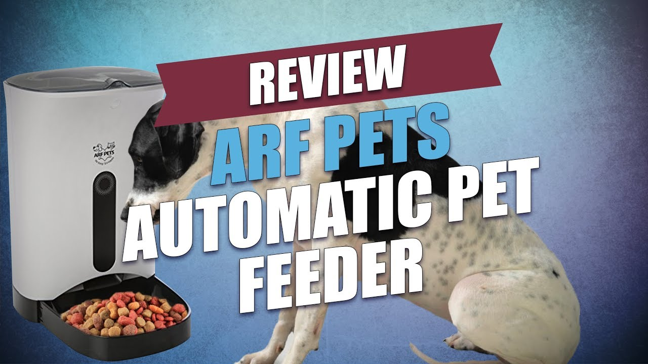 Arf Pets Automatic Pet Feeder Review
