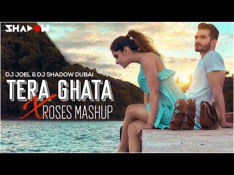Tera Ghata X Roses Mashup | DJ Joel X DJ Shadow Dubai | Gajendra Verma | The Chainsmokers