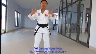 Tự học võ tại nhà buổi 1 võ đường Ngọc Hòa karate do
