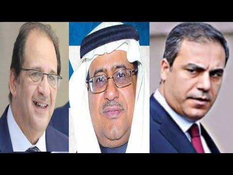 خطة المخابرات السعودية والمصرية خلال الحرب المقبلة مع تركيا